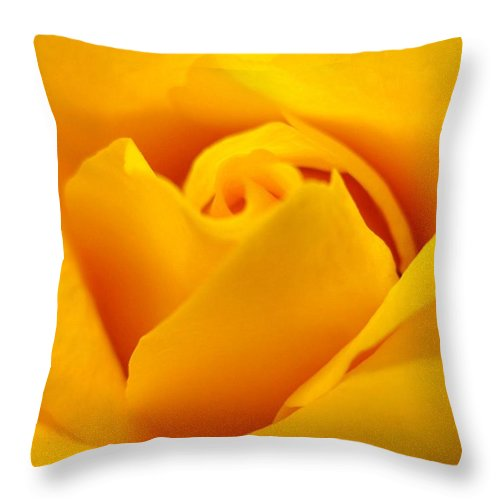 Rose Throw Pillow featuring the photograph Rose Yellow by Rhonda Barrett