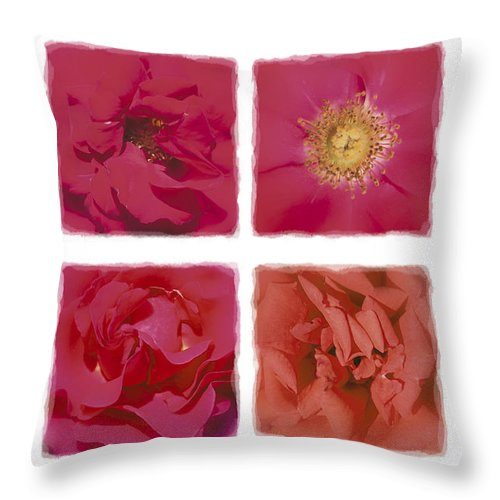 Roses Throw Pillow featuring the photograph Roses Are Red .... by Hazy Apple