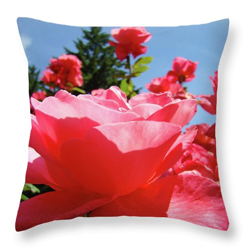 Rose Throw Pillow featuring the photograph Roses Pink Rose Landscape Summer Blue Sky Art Prints Baslee Troutman by Baslee Troutman