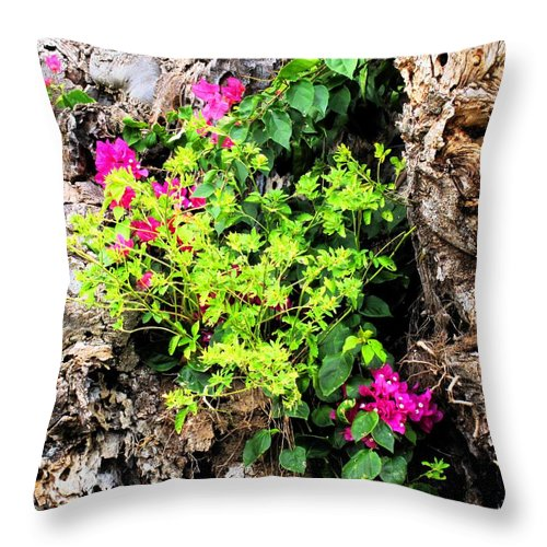 Flowers Throw Pillow featuring the photograph Rough Beauty by Ian MacDonald