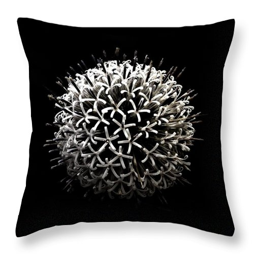 Nature Throw Pillow featuring the photograph Round by Aviv's Page