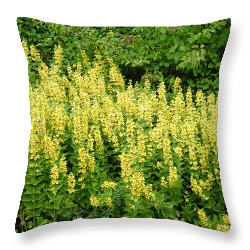 Flowers Throw Pillow featuring the photograph Row Of Yellow Flowers by Mikhael van Aken