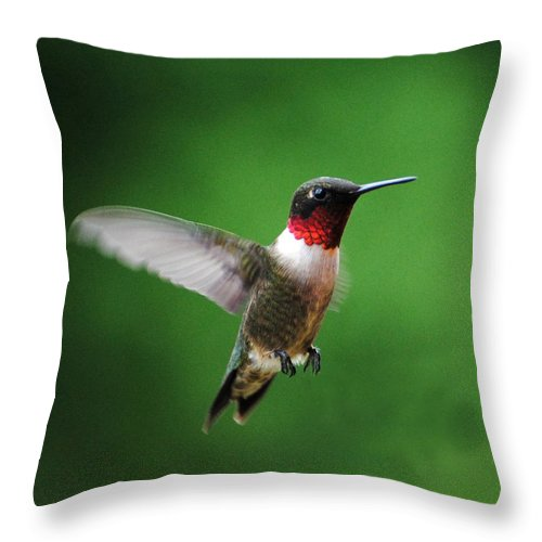 Avian Throw Pillow featuring the photograph Ruby Red Throated Hummingbird by Jai Johnson