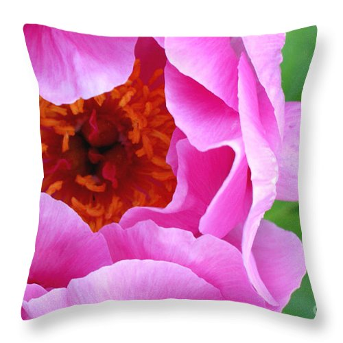 Peony Throw Pillow featuring the photograph Ruffles by Valerie Fuqua