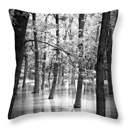 Water Throw Pillow featuring the photograph Rule Of 3 by Tatiana Gorbett