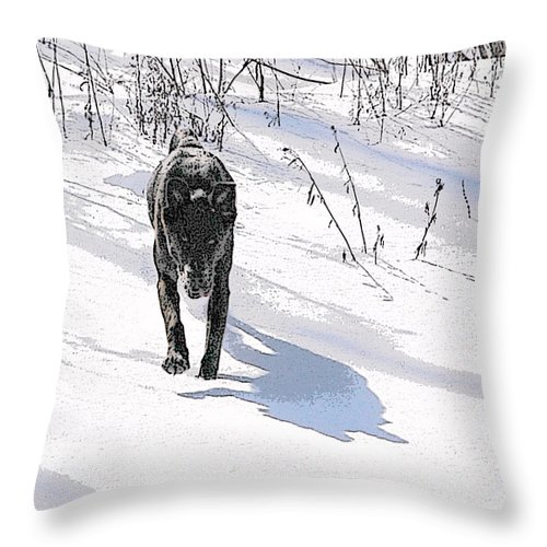 Dog Throw Pillow featuring the photograph Run To Me by Jacqueline Milner