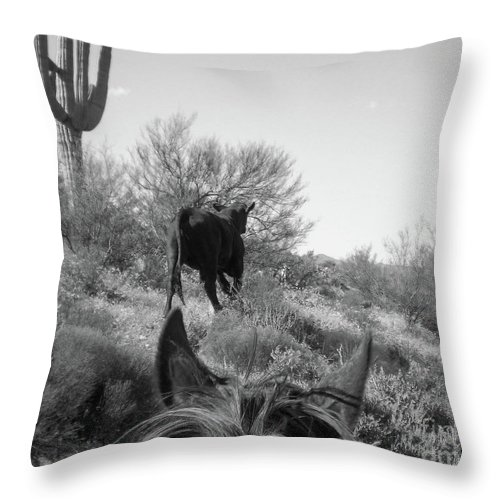 Cattle Throw Pillow featuring the photograph Runaway by Katie Brown