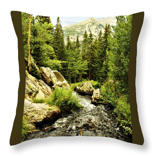 Colorado Throw Pillow featuring the photograph Running River by Marilyn Hunt