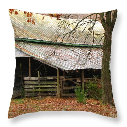 Rural Throw Pillow featuring the photograph Rural by Amanda Barcon