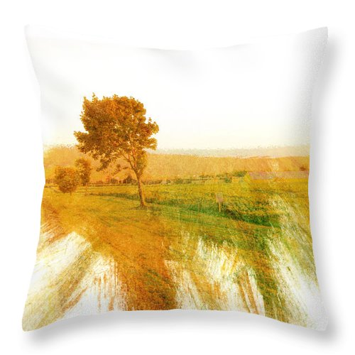Landscape Throw Pillow featuring the photograph Rural by Romano Da Silva