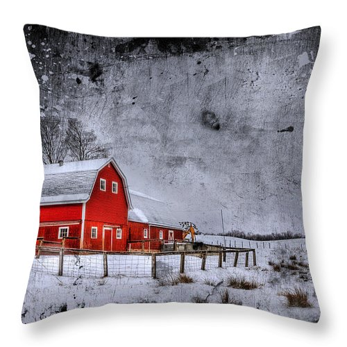 Barn Throw Pillow featuring the photograph Rural Textures by Evelina Kremsdorf