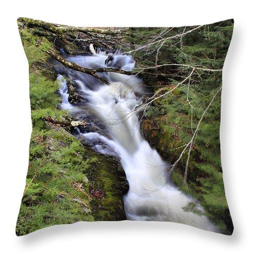Rural Throw Pillow featuring the photograph Rushing Montgomery Brook by Deborah Benoit