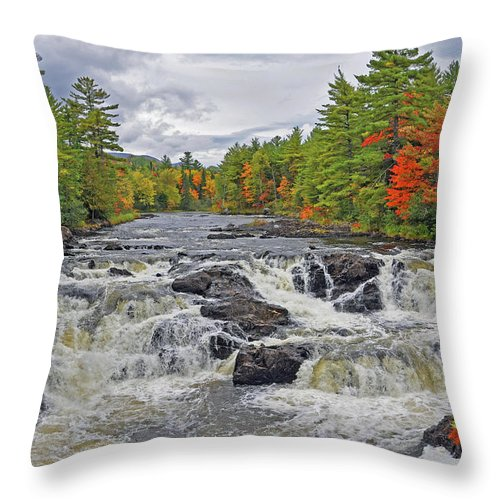 Nature Throw Pillow featuring the photograph Rushing Towards Fall by Glenn Gordon