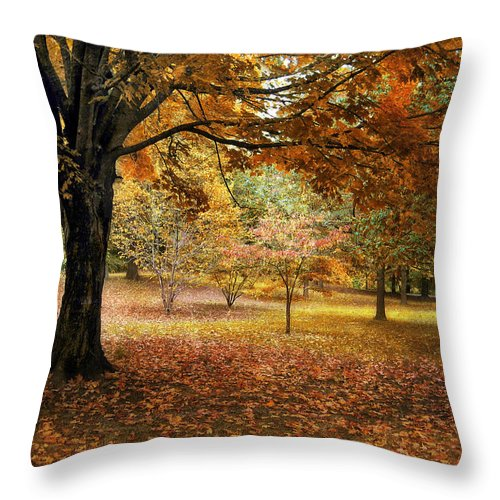 Autumn Throw Pillow featuring the photograph Rustic Autumn by Jessica Jenney