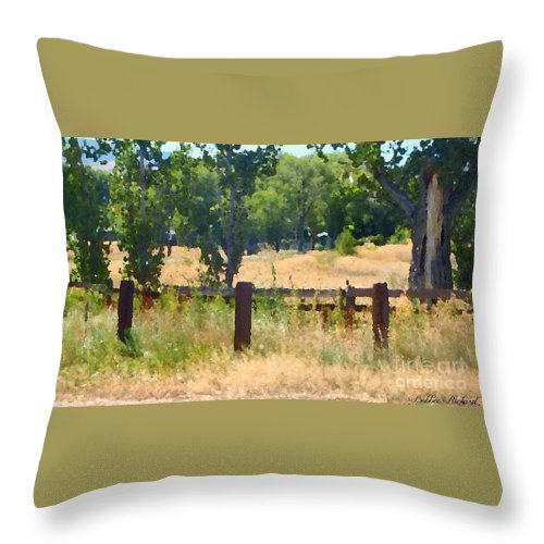 Digital Oil Throw Pillow featuring the photograph Rustic Painting by Bobbee Rickard