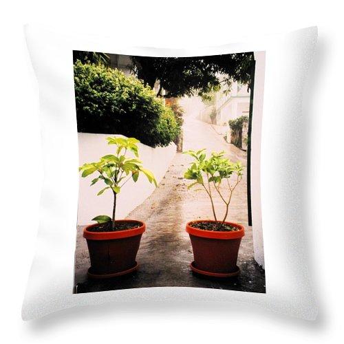 Saba Throw Pillow featuring the photograph Saba by Ian MacDonald