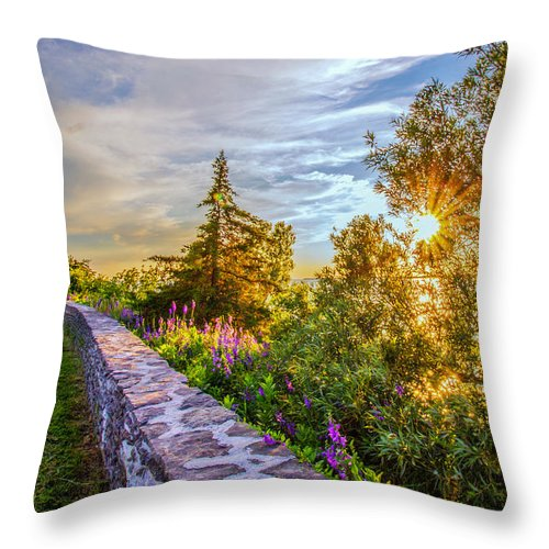 Historical Sites Throw Pillow featuring the photograph Sacket's Harbor Historic Battlefield by Rod Best