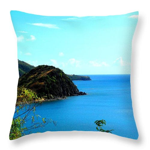 St Kitts Throw Pillow featuring the photograph Safe Harbor by Ian MacDonald