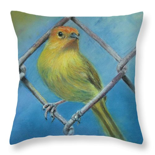 Bird Throw Pillow featuring the painting Safron Finch by Ceci Watson
