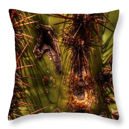 Saguaro Throw Pillow featuring the photograph Saguaro Detail No. 21 by Roger Passman