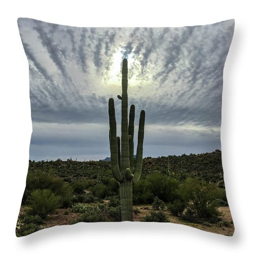 Sun Throw Pillow featuring the photograph Saguaro Sun Break Clouds by Katie Brown