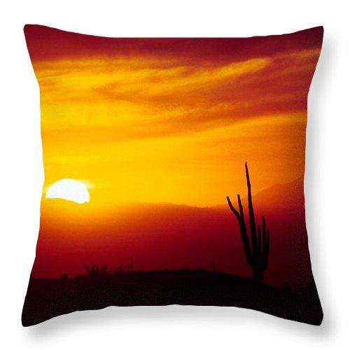 Arizona Throw Pillow featuring the photograph Saguaro Sunset by Randy Oberg