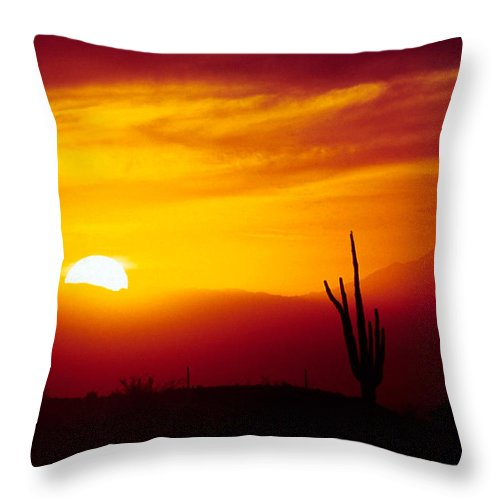 Arizona Throw Pillow featuring the photograph Saguaro Sunset by Randy Oberg