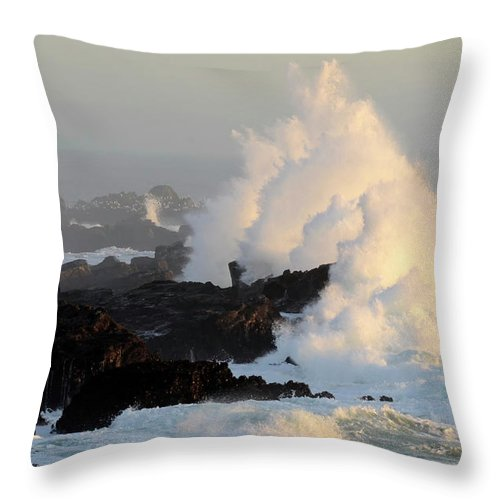 Waves Throw Pillow featuring the photograph Salt Point Wave by Bob Christopher