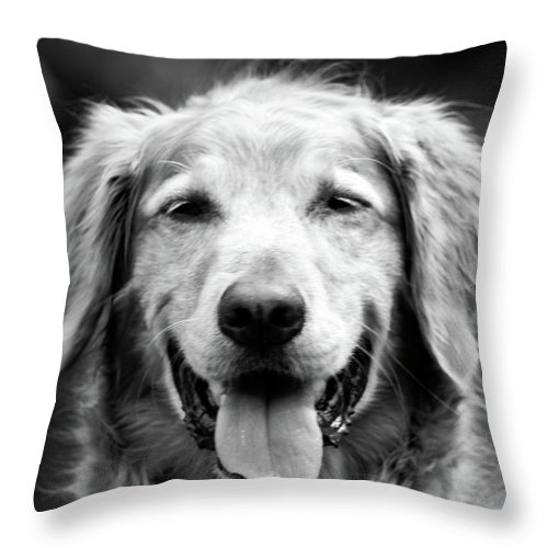 Dog Throw Pillow featuring the photograph Sam Smiling by Julie Niemela