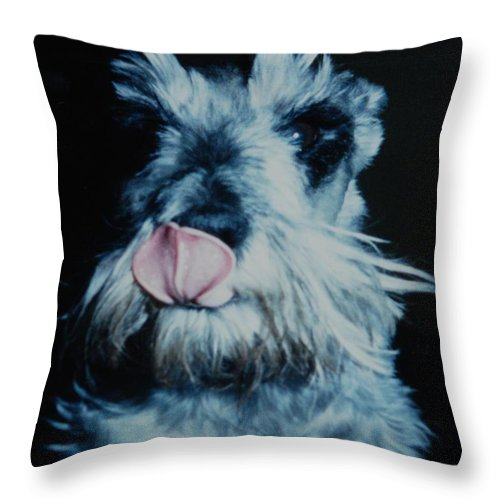 Dogs Throw Pillow featuring the photograph Sam The Fat Cow by Rob Hans
