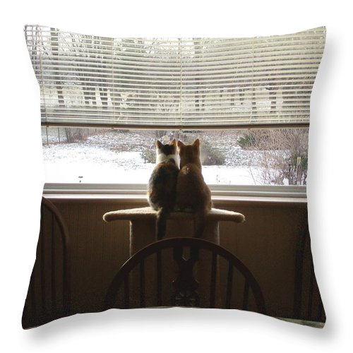 Cats Throw Pillow featuring the photograph Samson And Delilah by Peggy King