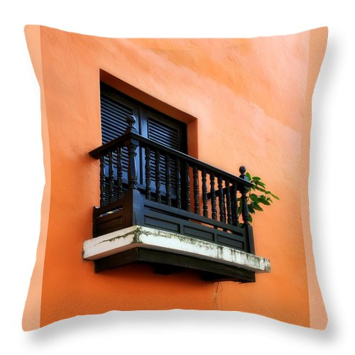 Window Throw Pillow featuring the photograph San Juan Window by Perry Webster