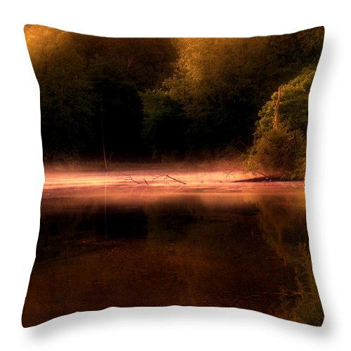 Cove Throw Pillow featuring the photograph Sanctuary by Tom Mc Nemar