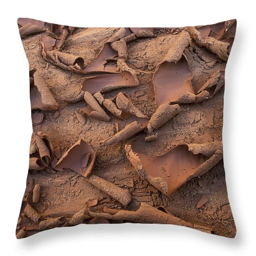 Capitol Reef Throw Pillow featuring the photograph Sand And Mud Curls by Sandra Bronstein