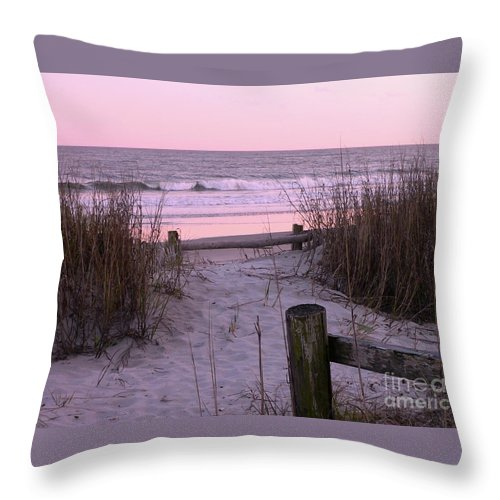 Beach Throw Pillow featuring the photograph Sand And Sea by Al Powell Photography USA