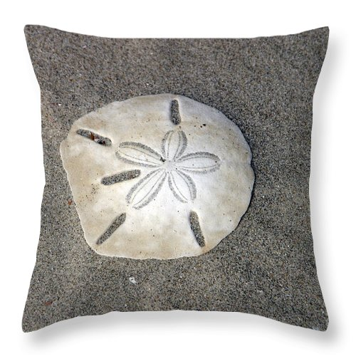 Sea Side Throw Pillow featuring the photograph Sand Dollar 1 by Janice Keener