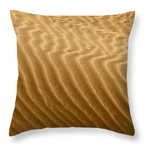 Sand Throw Pillow featuring the photograph Sand Dune Mojave Desert California by Christine Till