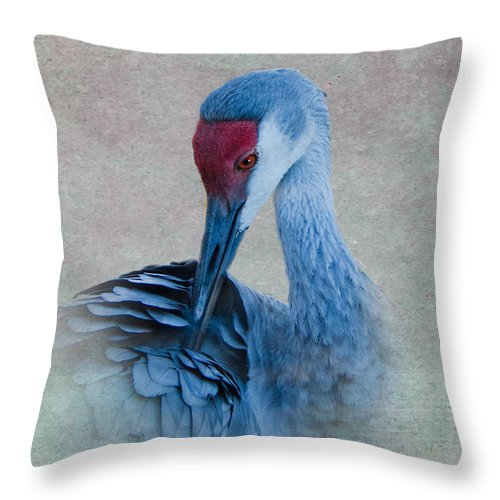 Sandhill Crane Throw Pillow featuring the photograph Sandhill Crane by Betty LaRue