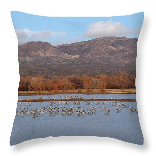 Sandhill Crane Throw Pillow featuring the photograph Sandhill Cranes Beneath The Mountains Of New Mexico by Max Allen