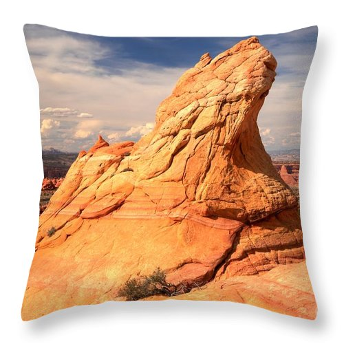 Coyote Buttes South Throw Pillow featuring the photograph Sandstone Gopher by Adam Jewell