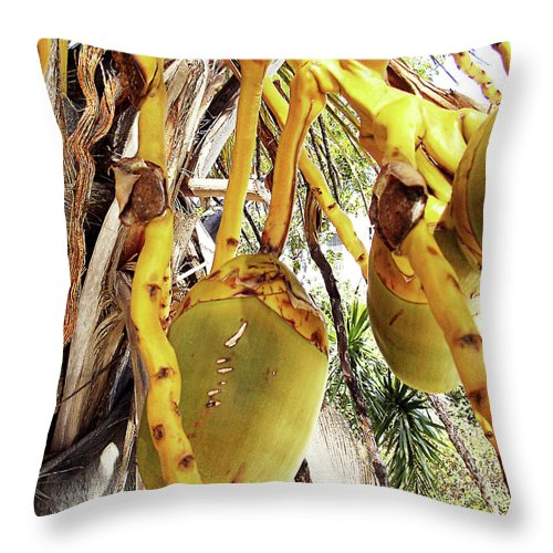 Florida Throw Pillow featuring the photograph Sanibel Coconuts Gp by Chris Andruskiewicz