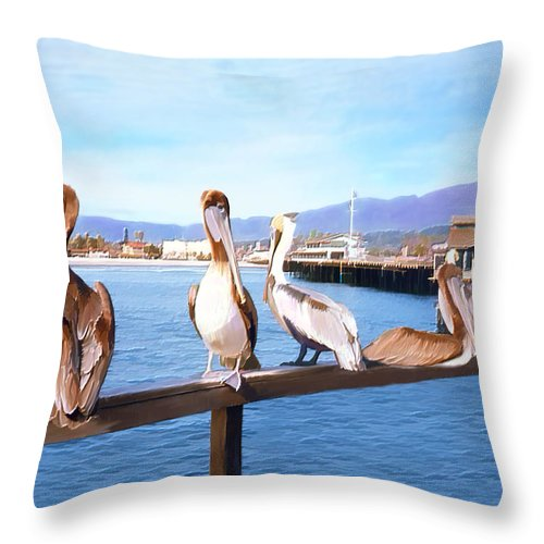 Harbor Throw Pillow featuring the photograph Santa Barbara Pelicans by Kurt Van Wagner