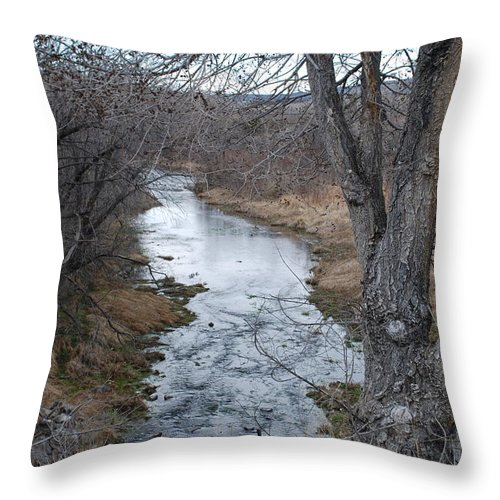 Santa Fe Throw Pillow featuring the photograph Santa Fe River by Rob Hans