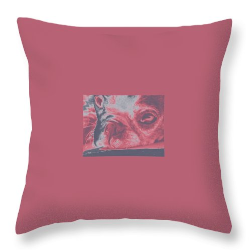Dog Throw Pillow featuring the photograph Sassy Red Dog by Amber Stubbs