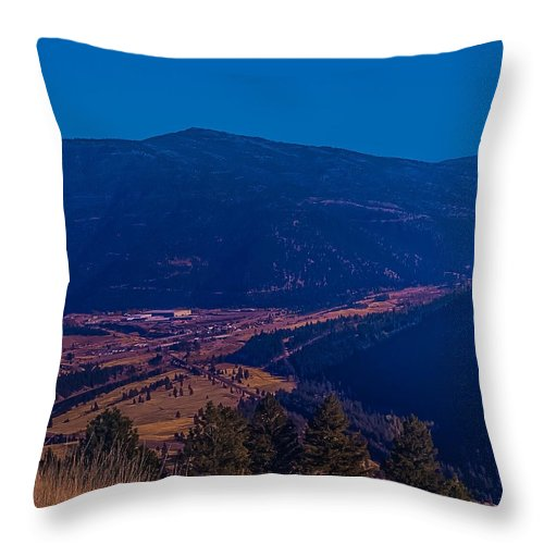 Throw Pillow featuring the photograph Satirical Scene by Dan Hassett