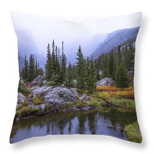Saturated Forest Throw Pillow featuring the photograph Saturated Forest by Chad Dutson