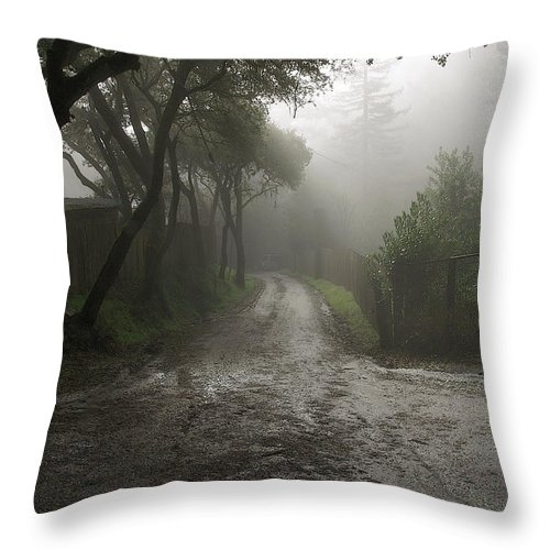 Morning Throw Pillow featuring the photograph Saturday Morning Walk Down The Road by Michael Roll