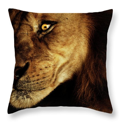 Lion Throw Pillow featuring the photograph Savage by Andrew Paranavitana