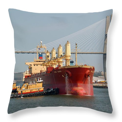 Savannah River Throw Pillow featuring the photograph Savannah River Scenic by Suzanne Gaff