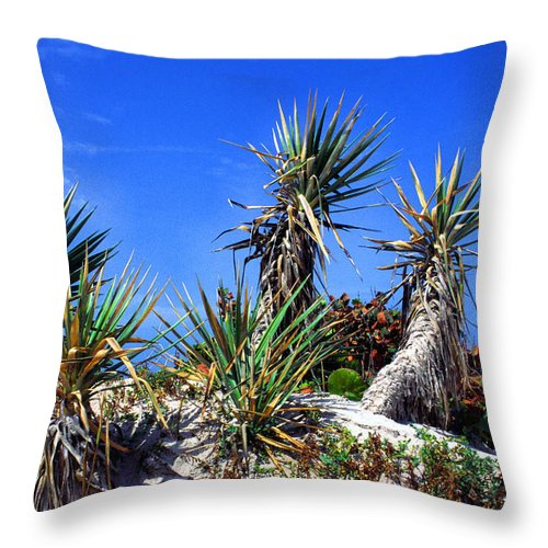 Saw Palmetto Throw Pillow featuring the photograph Saw Palmetto Canaveral National Seashore by Thomas R Fletcher